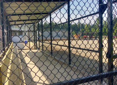 Softball-City-Dugout2